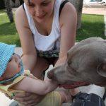 Capitanes-Fantasticos-Las-Mascotas-y-los-bebes-si-son-compatibles