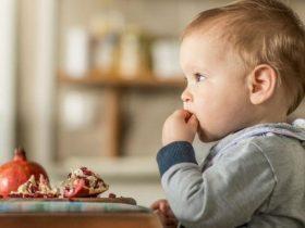 capitanes-fantasticos-baby-led-weaning-el-metodo-para-que-los-bebs-aprendan-a-comer-solos-390-int